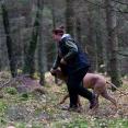 Kajsa tränar Diezel med sökrulle