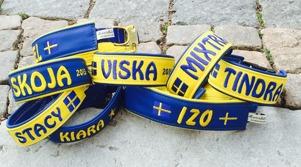 GULT & BLÅTT Heja Sverige!!