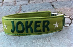 Joker-Grönt skinn med mörkgrön text. Halsbandets bredd 4 cm. Välj variant, storlek, bredd & symboler i meny:n