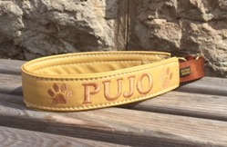 Pujo- Guld skinn med creme champange text. Halsbandets bredd 3 cm. Välj variant, storlek & symboler i meny:n nedan.