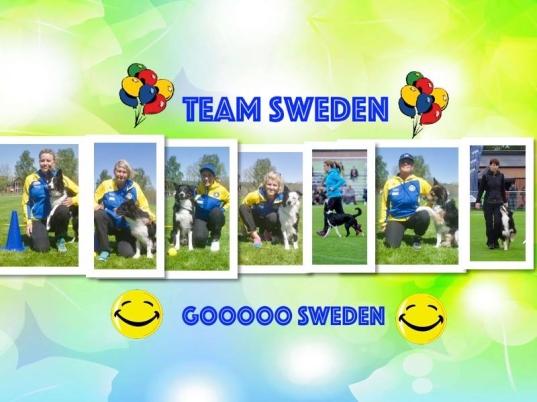 Svernska lydnads landslaget har vi sponsrat  2015-16-17 med Brodyrhalsband och leksak.