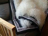 Dubbelpläd monterad på vadmal med dekorband av handtryckt lammskinn.