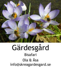 Söker du annorlunda utflykt & aktivitetet i Falkenberg? Välkommen till Bisafari på Skrea Gärdesgård - en aktivitet med sting i!