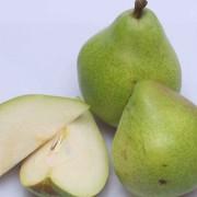 Päronmousse