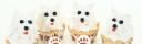 hundmuffins, hundcupcakes, kalas med hundtema, hundar på muffins