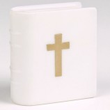 Bibel / Psalmbok