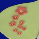 Runda blommor med ejektor. Baketool