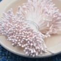 Stamens - Pistiller för sockerblommor - Ljus rosa