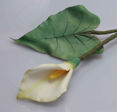 Callalilja med blad.