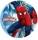 spindelmannen4