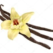 Vanilj arom