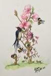 SOMMAR akvarell 20x30 cm 1500:-