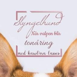 Hundpodden Vår Bästa Vän