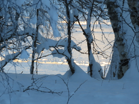 Vackert att se på, men bistert - 28 grader vid Storån den 10/1 - 2018.