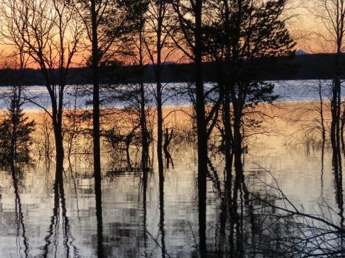 Särnasjön uppe bland träden 9/5 - 2018..