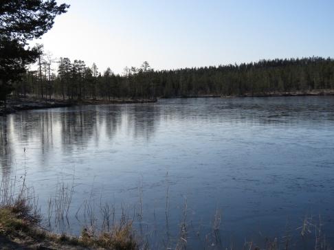 Isen lade sig ganska lugnt och fint och rätt tidigt på många vatten i år = bra isfiske i vinter?