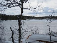 Vinter var seg i år, snöfall dagligen under halva maj!.