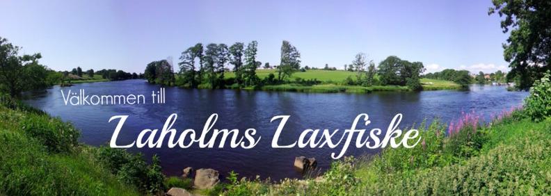 Laholms Laxfiske