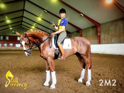 Dr Werner från 2M2 Horses