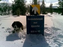 Långt från snöbrist