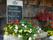 Mat- & blomsterprakt © Austria Travel - Rusner