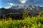 Dachstein och Ramsau från Planai © Hoeflehner