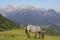 Runt Gosaukamm © Austria Travel - Rusner