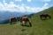 Vandring från Saalbach till Zell am See 1 © Austria Travel - Rusner