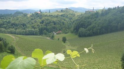 Vandring i vingårdar i södra Steiermark © Austria Travel / Rusner