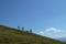 Vandring på gräsbergen i Pinzgau © Creative Commons - Wald1siedel