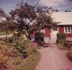 Trädgården mot entrén