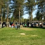 Mera sol och publik... Foto: Helge Koivusaari.