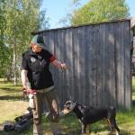 Smålandsstövaren Japp blev BIR och tog sitt tredje CK i jaktklass. Ägare Christel Karlsson, Vindeln