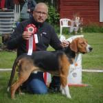 BIS-1 Rosådalens Boss äg, Nicklas Jonsson Bygdsiljum