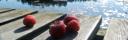 Jordgubbar på bryggan Vildmarksbyn
