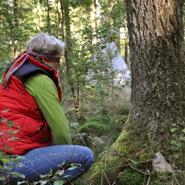 Dagkonferens i Halland med naturen som rum - här med mindfulness och flow learning