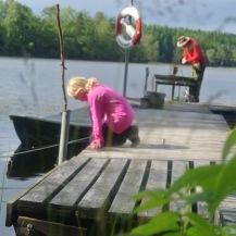 Fiska gädda & abborre i vår sjö