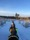 turridning på islandshästar IMG_4292