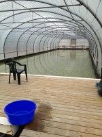 Bild från växthuset över stora dammen