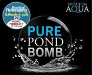 26. Pond Bomb 500g