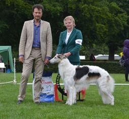 "Best in Show Junior at ""Skokloster summer show"" 13 months old"