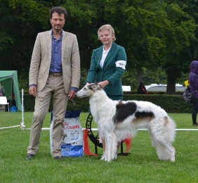 "Best in Show Junior at ""Skokloster summer show"""