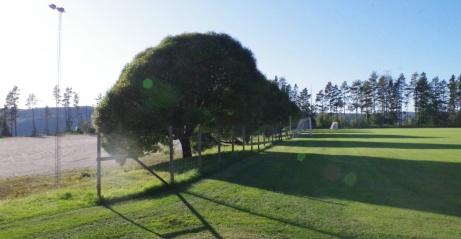 Fältet till höger och grusplanen till vänster.