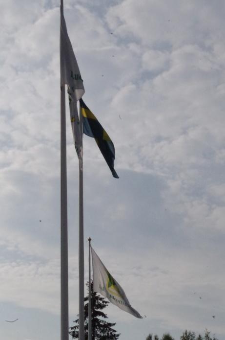 Den svenska fanan och Luckstaflaggan vajar i vinden uppe på Sörforsvallen, som för dagen var i stort sett mygg- och knottfri för ovanlighetens skull. Foto: Pia Skogman, Lokalfotbollen.nu.