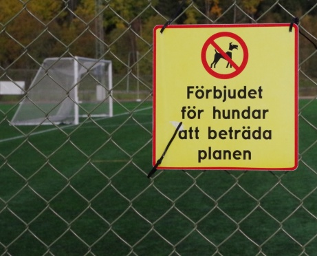 Tur att man har katter :-) Foto: Pia Skogman, Lokalfotbollen.nu.