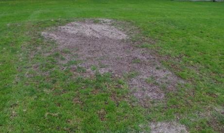 Dags att så lite gräs framför målet? Foto: Pia Skogman, Lokalfotbollen.nu.