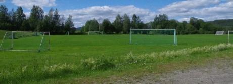 Gräsrektangeln utan någon fårrd i vägen. Foto: Pia Skogman, Lokalfotbollen.nu.