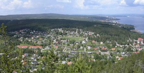 Flygfoto över Hemmanet och Svartviks IP, Foto: Svartvikare