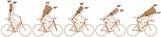Bikefitting - Montering