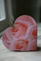 Ask - Rosa hjärtat